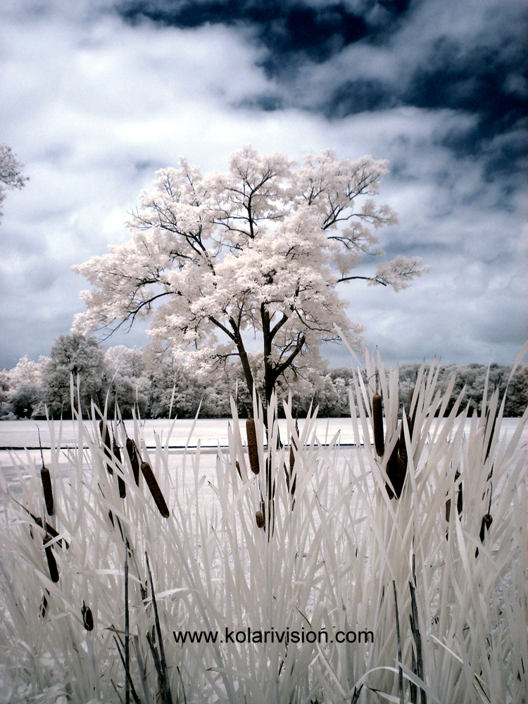 Kolari Vision Infrared photography digital fale color photoshop tutorial