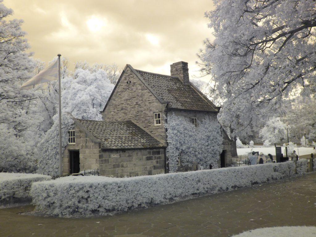 infrared conversion photo by Image from Noel Canning