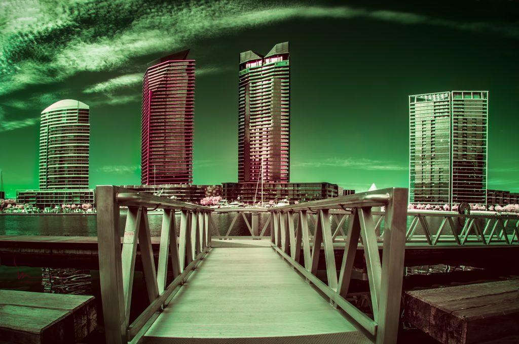 infrared conversion photo by Image from izabela mieliwodzki