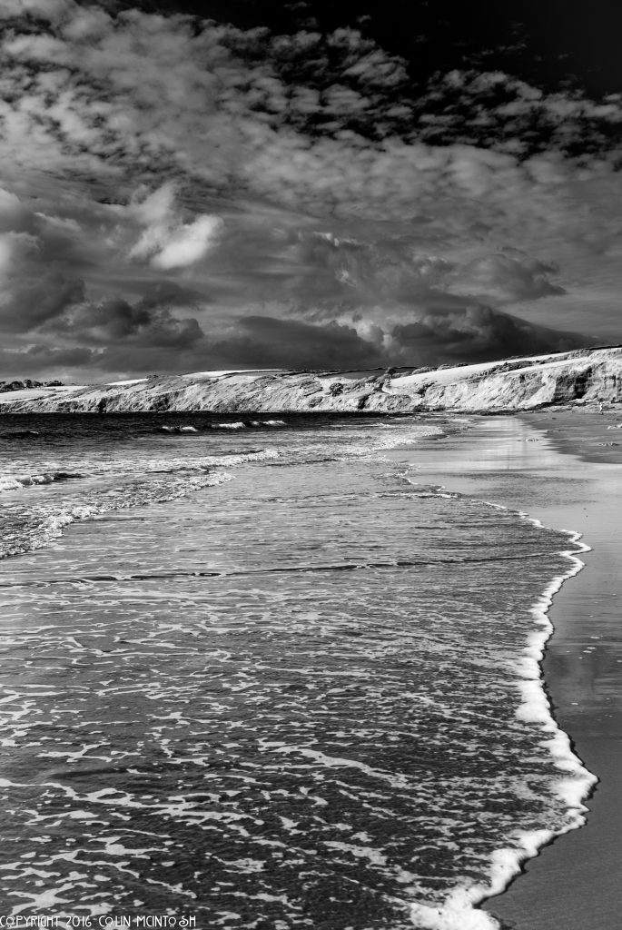 infrared conversion photo by Image from C McIntosh