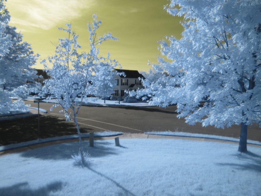 infrared conversion photo by Canon 100 HS 590nm Filter
