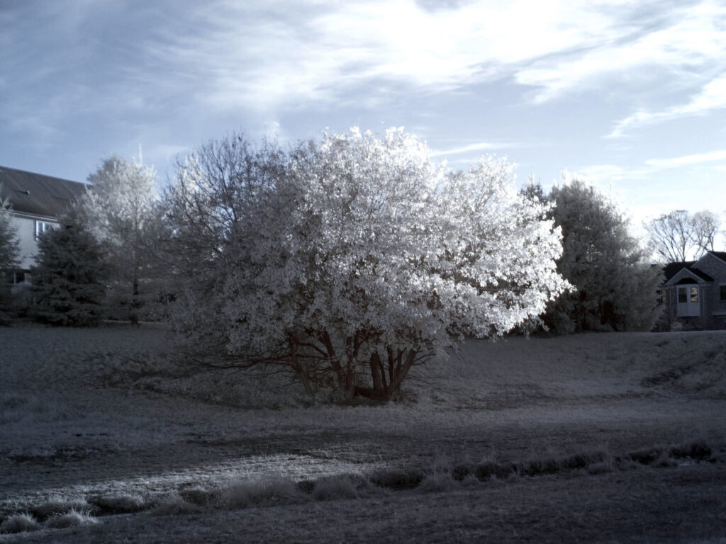 Kolari Vision infrared conversion 720nm Canon Point and Shoot G3