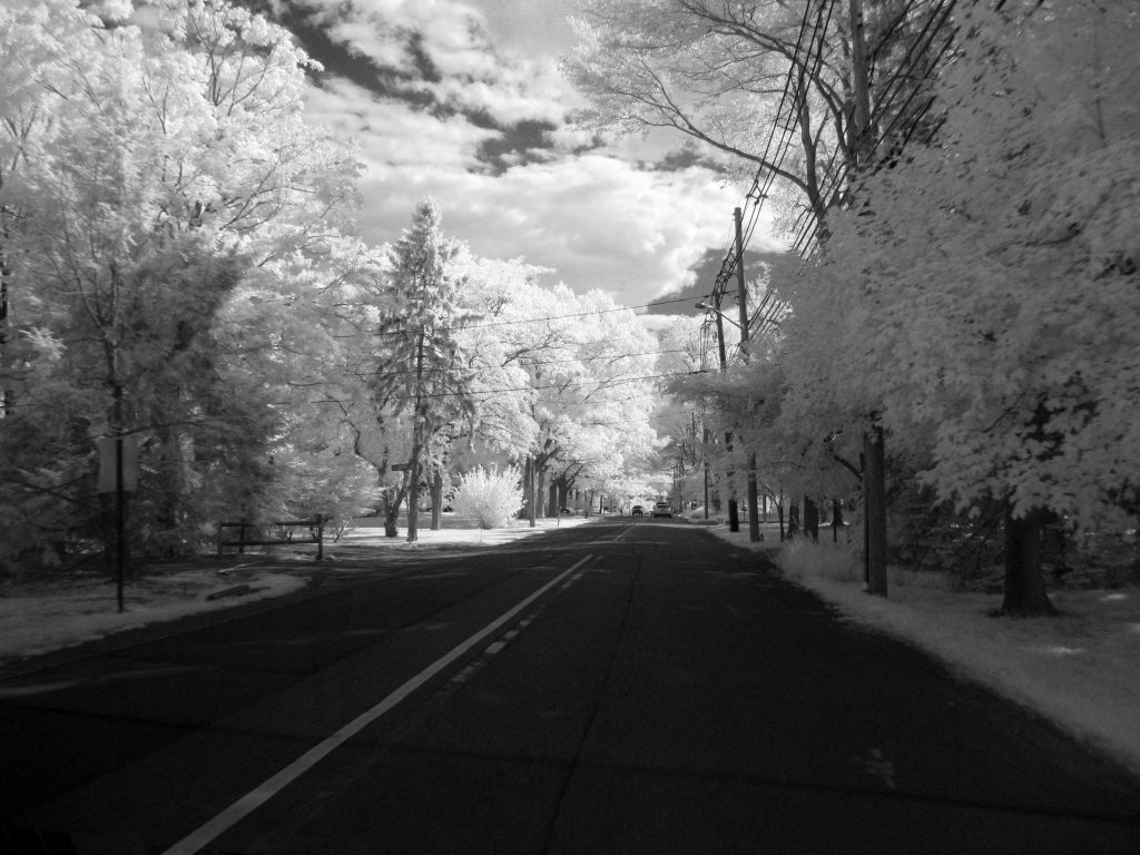 infrared conversion photo by Canon A3000 720nm Filter B&W