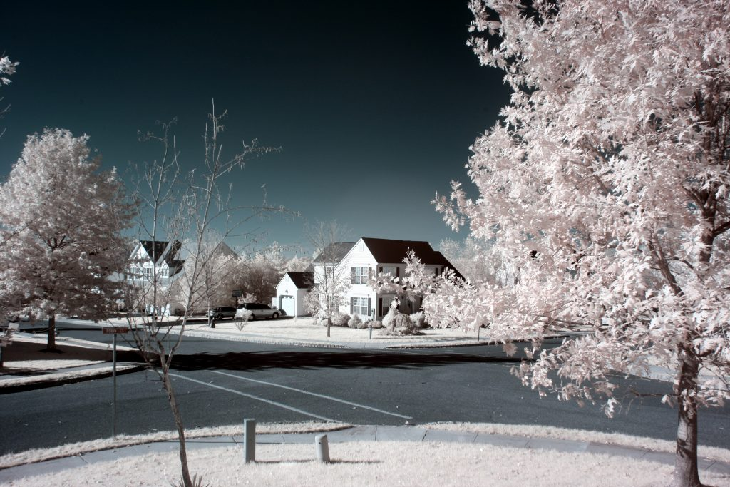 infrared conversion photo by Canon XTI (400D) 720nm Filter
