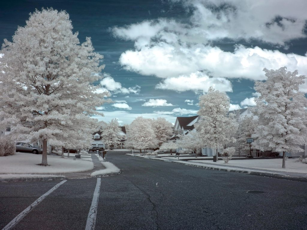 infrared conversion photo by Canon G1X 720nm Filter