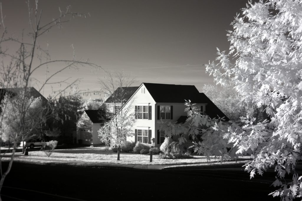 infrared conversion photo by Canon XSI (450D) 850nm Filter