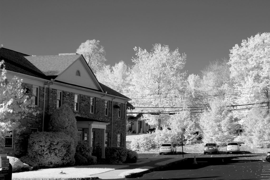 infrared conversion photo by Canon T5 (1200D) 720nm Filter B&W