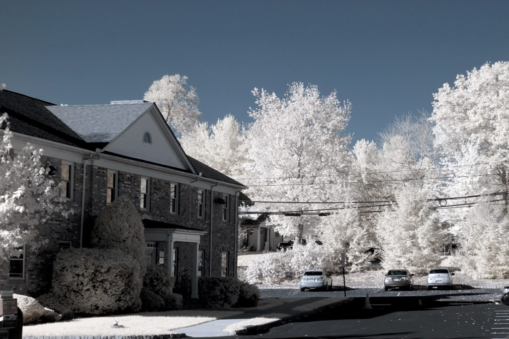 infrared conversion photo by Canon T5 (1200D) 720nm Filter