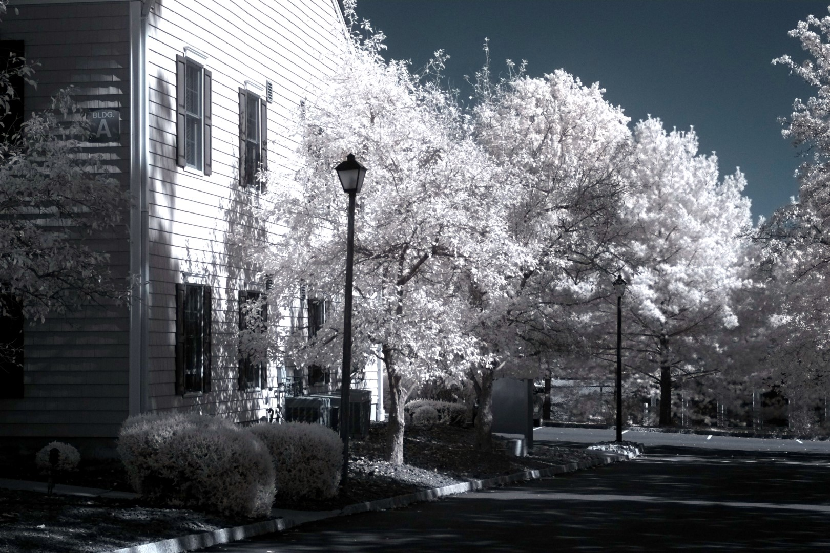 Fujifilm infrared conversion