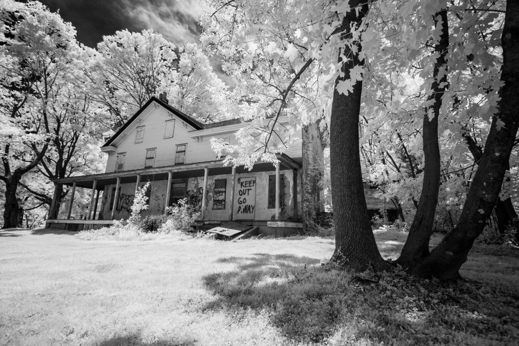 infrared conversion photo by Canon EOS-M Blue NDVI Filter