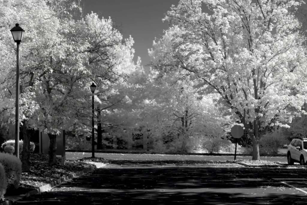 infrared conversion photo by Canon 7D 850nm Filter