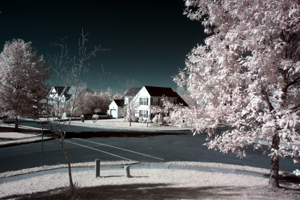 infrared conversion photo by Canon XS (100D) 720nm Filter