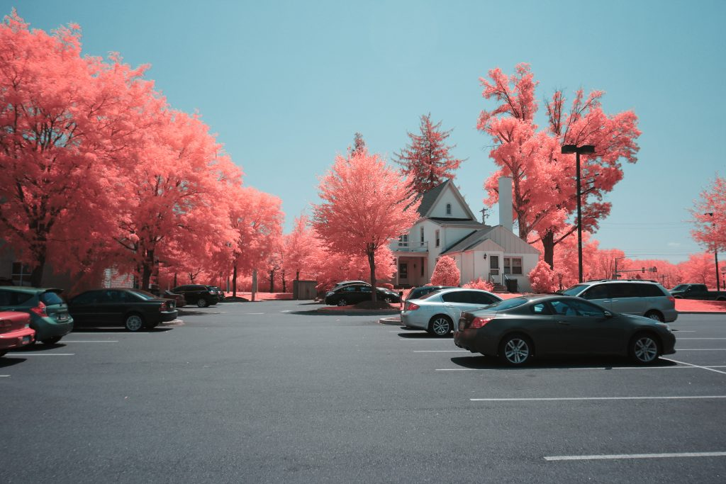 infrared conversion photo by Canon EOS-M NDVI Blue Filter