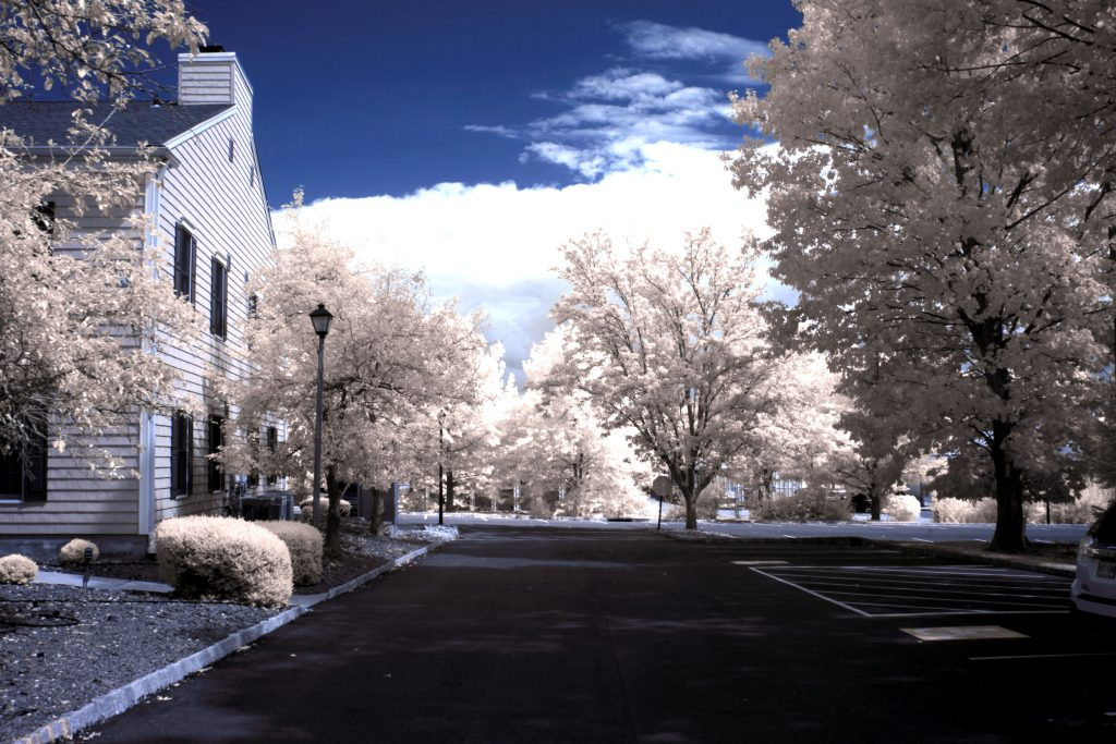 infrared conversion photo by Canon 5DII 665nm Filter