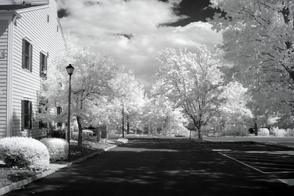 infrared conversion photo by Canon 5DII 850nm Filter