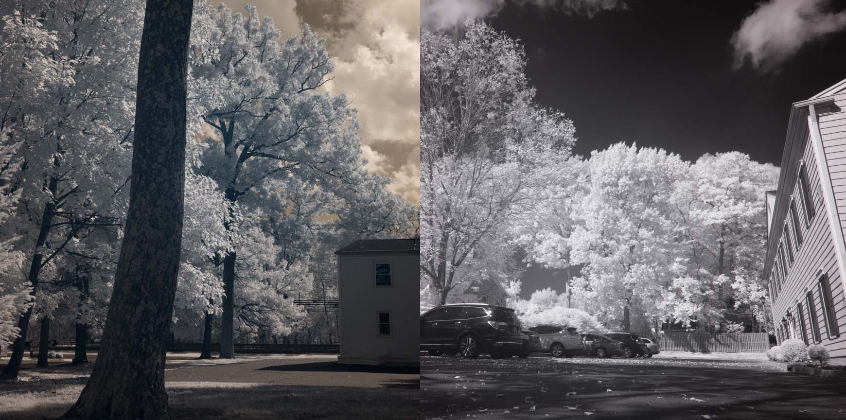 The Nikon Z7 Infrared Photography Review - Kolari Vision