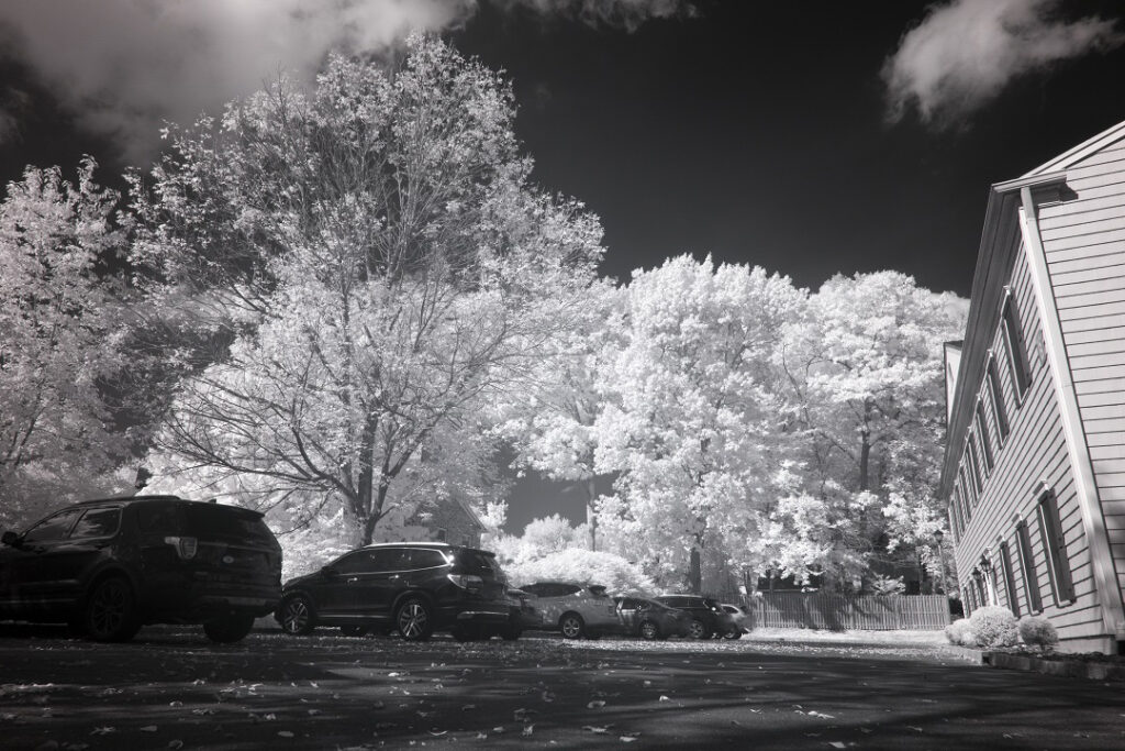 infrared conversion photo by Nikon Z7 850nm