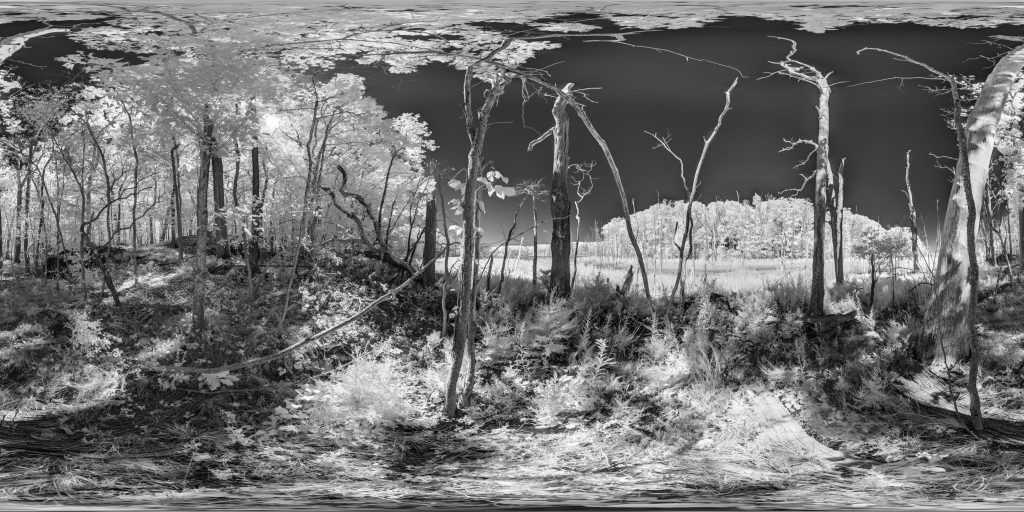 Kolari Vision infrared conversion 850nm Nikon DSLR and Mirrorless Nikon D810