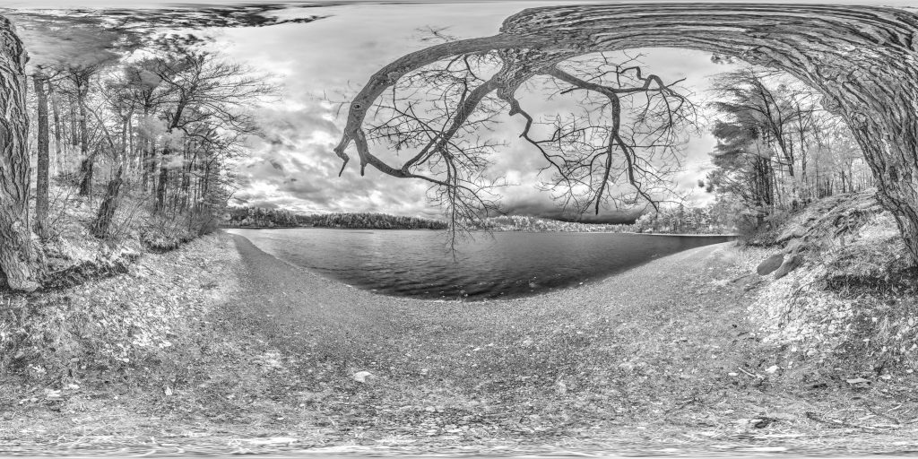 infrared conversion photo by Walden Pond Panorama