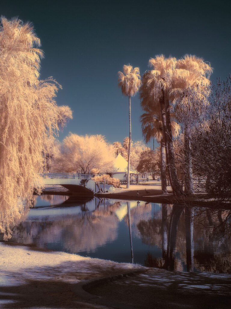 infrared conversion photo by