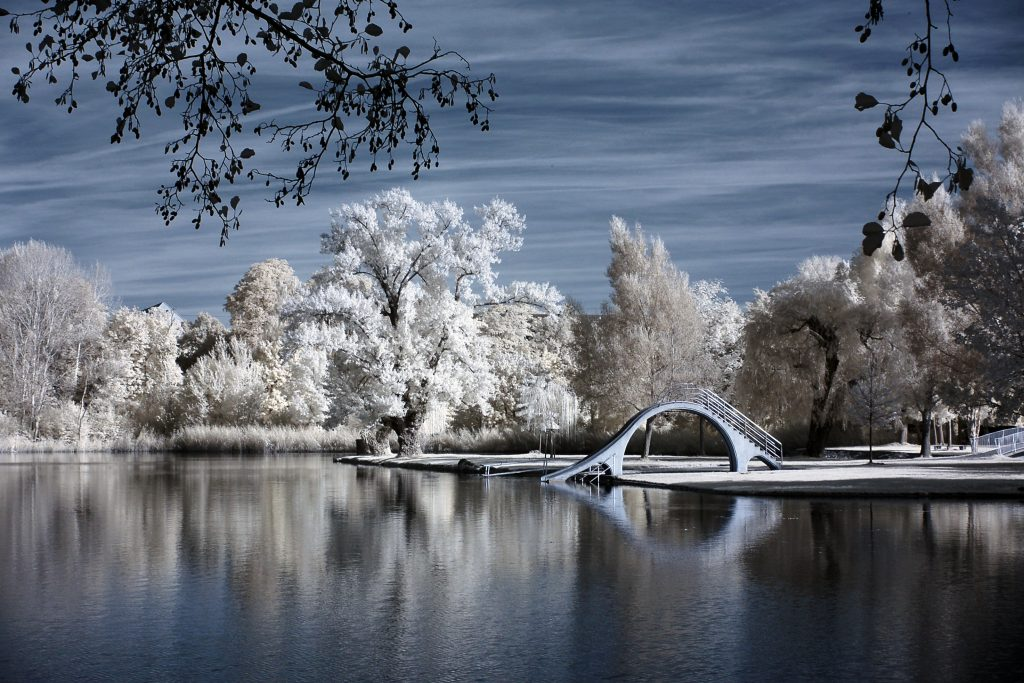 infrared conversion photo by swimming lake Woog at Darmstadt germany
