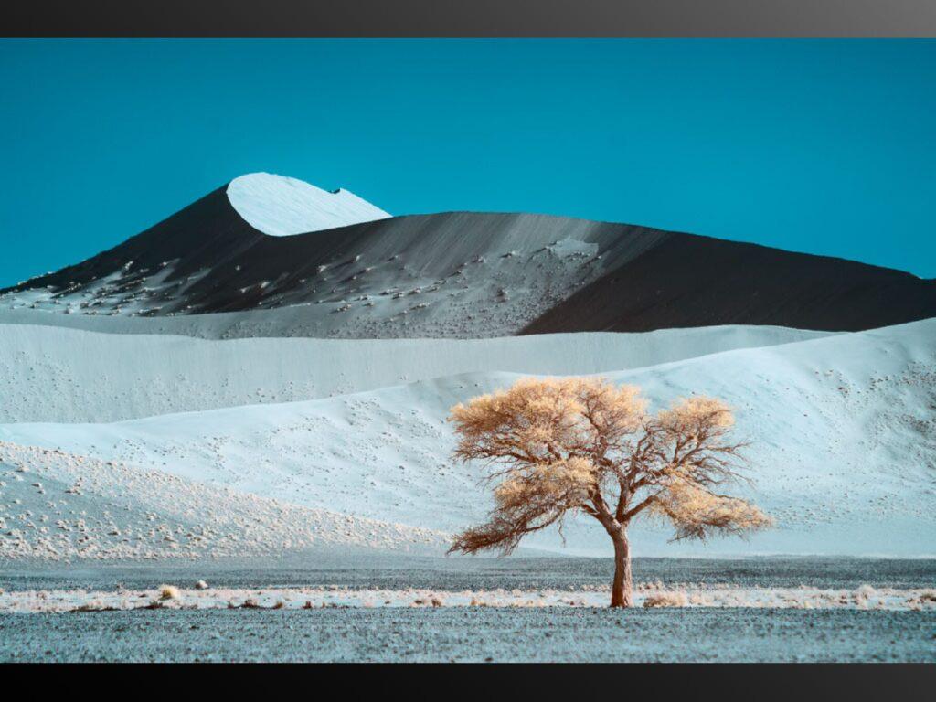 Kolari Vision infrared conversion 665nm Nikon DSLR and Mirrorless Nikon Z7